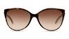 Tiffany & Co TF4089B Women's Sunglasses Brown/Tortoise Shell