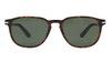 Persol PO 3019S Men's Sunglasses Green/Tortoise Shell