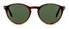 Persol PO 3092S Women's Sunglasses Green/Tortoise Shell