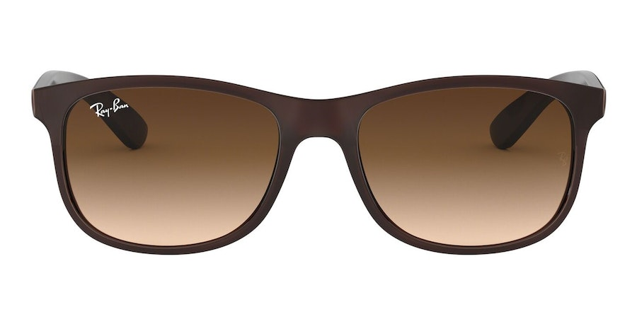 Ray-Ban Andy RB 4202 Men's Sunglasses Brown/Brown