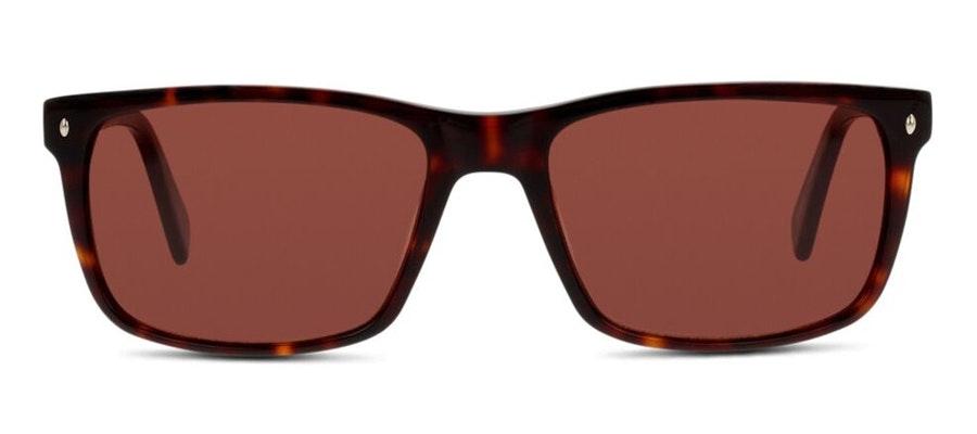 C-Line CN EM23 Men's Sunglasses Brown/Tortoise Shell