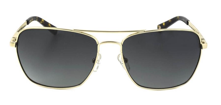 Ted Baker Dunne TB 1404 Men's Sunglasses Green/Gold