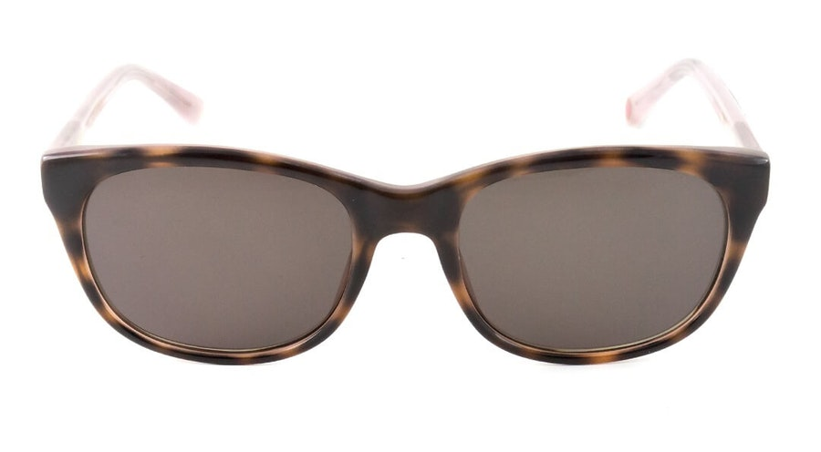 Ted Baker Paige TB 1448 Women's Sunglasses Brown/Havana