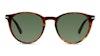 Persol PO 3152S Men's Sunglasses Green/Tortoise Shell
