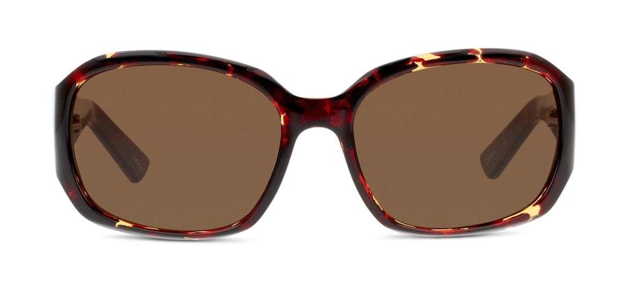 Seen FF11 Women's Sunglasses Brown/Tortoise Shell