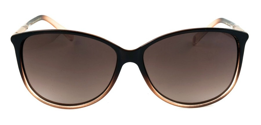 Ted Baker Raven TB 1495 Women's Sunglasses Brown/Brown