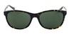 Joules Stratford 7016 Women's Sunglasses Brown/Tortoise Shell