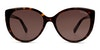 Tommy Hilfiger TH1573/S Women's Sunglasses Brown/Tortoise Shell