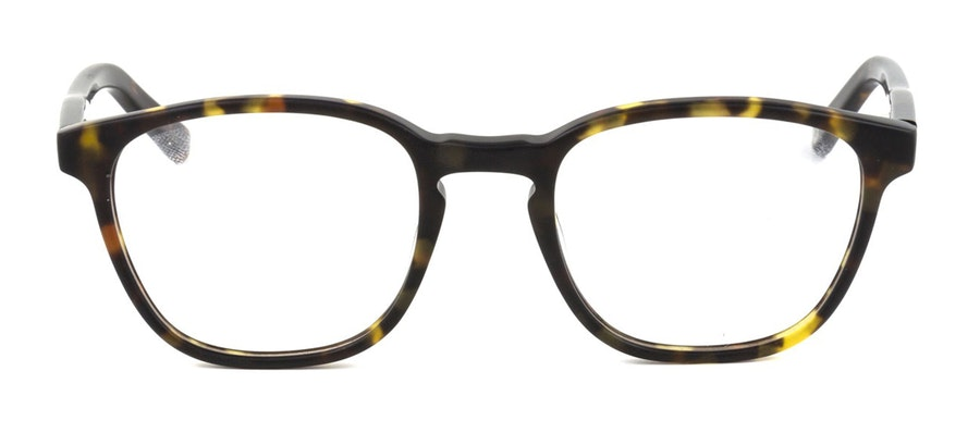 Pepe Jeans PJ 4038 Children's Glasses Tortoise Shell