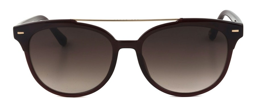 Ted Baker Solene TB 1539 Women's Sunglasses Brown/Red