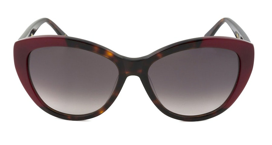 Whistles Sienna WHS020 Women's Sunglasses Brown/Tortoise Shell