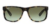 Ray-Ban Justin RB4165 Men's Sunglasses Green/Tortoise Shell