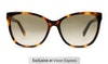 Tommy Hilfiger TH 1754/S Women's Sunglasses Brown/Tortoise Shell