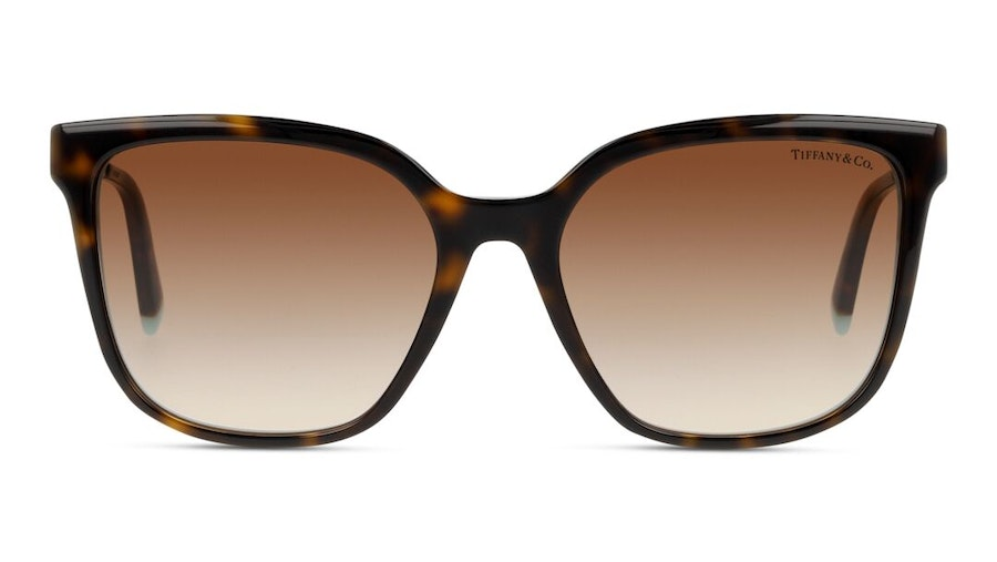 Tiffany & Co TF 4165 Women's Sunglasses Brown/Tortoise Shell