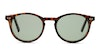 Prive Revaux Maestro Sun Unisex Sunglasses Green/Brown