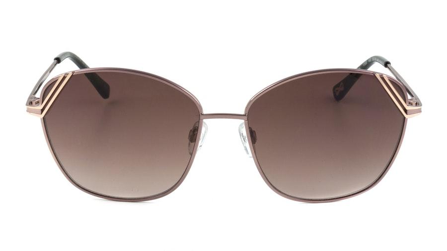 Ted Baker Sanna TB1568 Women's Sunglasses Brown/Pink