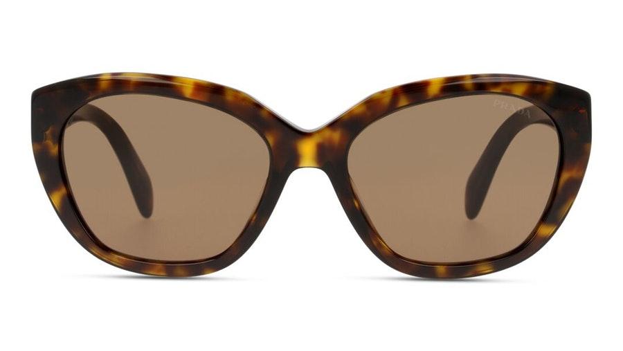 Prada PR16XS Women's Sunglasses Brown/Havana