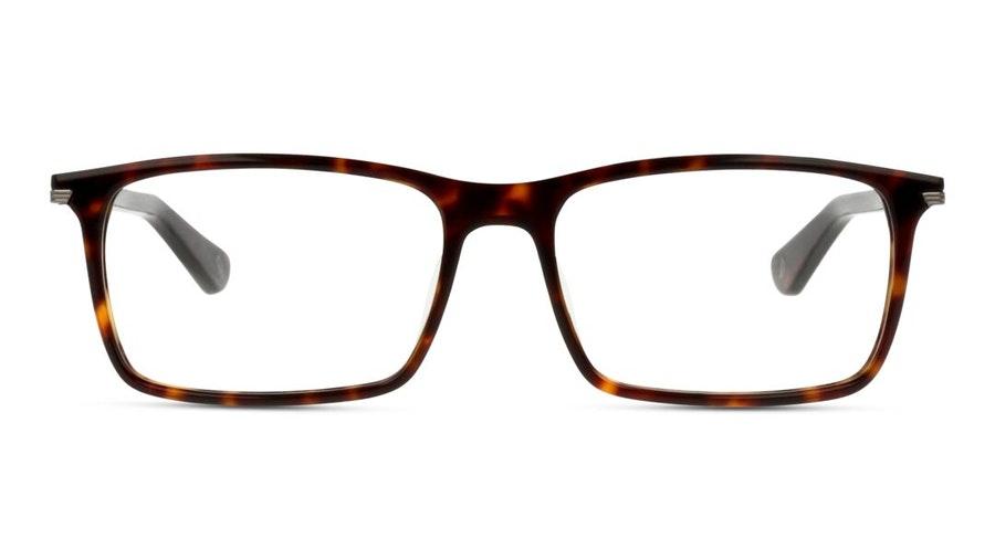 Police VPL 691 (0722) Glasses Tortoise Shell