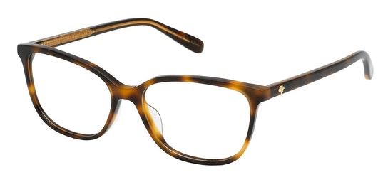 VML 131 Women's Glasses Transparent / Tortoise Shell
