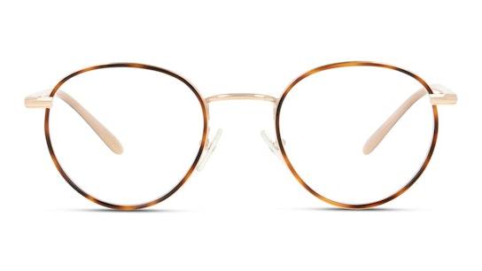 Java 1 (ECOR) Glasses Transparent / Tortoise Shell