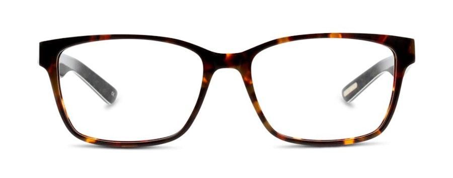 Ted Baker TB 8128 Men's Glasses Tortoise Shell