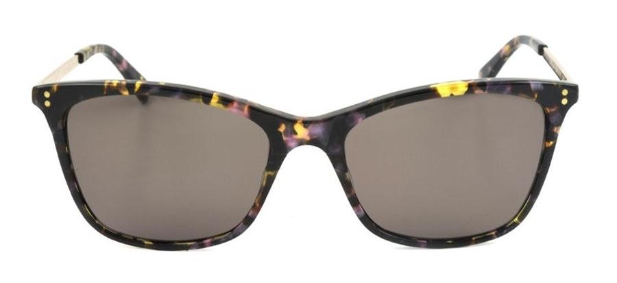 Ted Baker Talia TB 1416 (391) Sunglasses Brown / Tortoise Shell