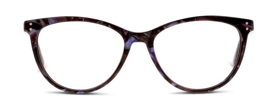 Ted Baker TB 9146 (701) Glasses Tortoise Shell