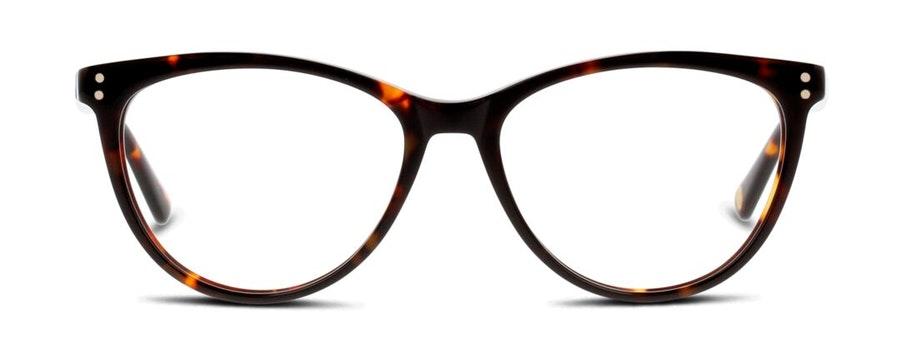 Ted Baker TB 9146 (145) Glasses Dark Tortoise Shell