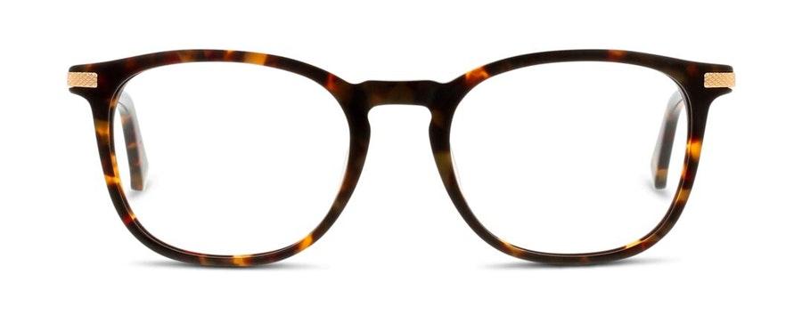 Ted Baker TB 8180 (145) Glasses Tortoise Shell