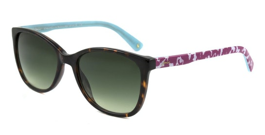 Chesil JS 7050 Women's Sunglasses Green / Tortoise Shell