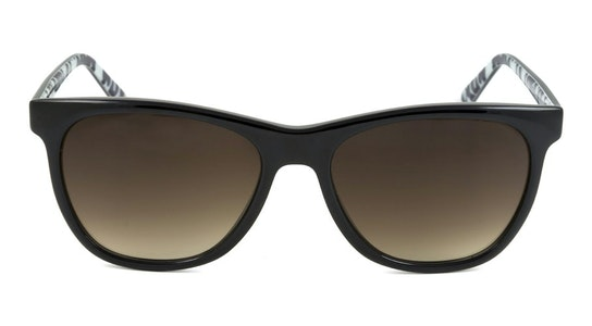 Portabello JS 7052 Women's Sunglasses Brown / Black