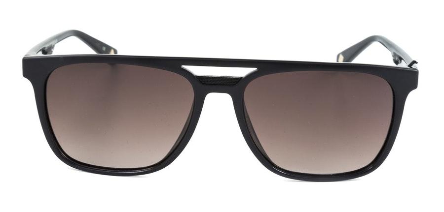 Ted Baker Holt TB 1494 Men's Sunglasses Brown / Black