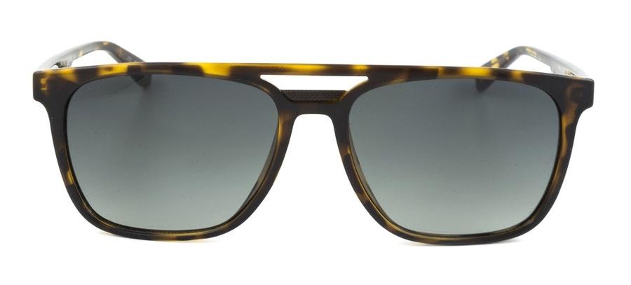 Ted Baker Holt TB 1494 Men's Sunglasses Green / Havana