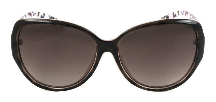 Ted Baker Shay TB 1394 Women's Sunglasses Brown / Tortoise Shell