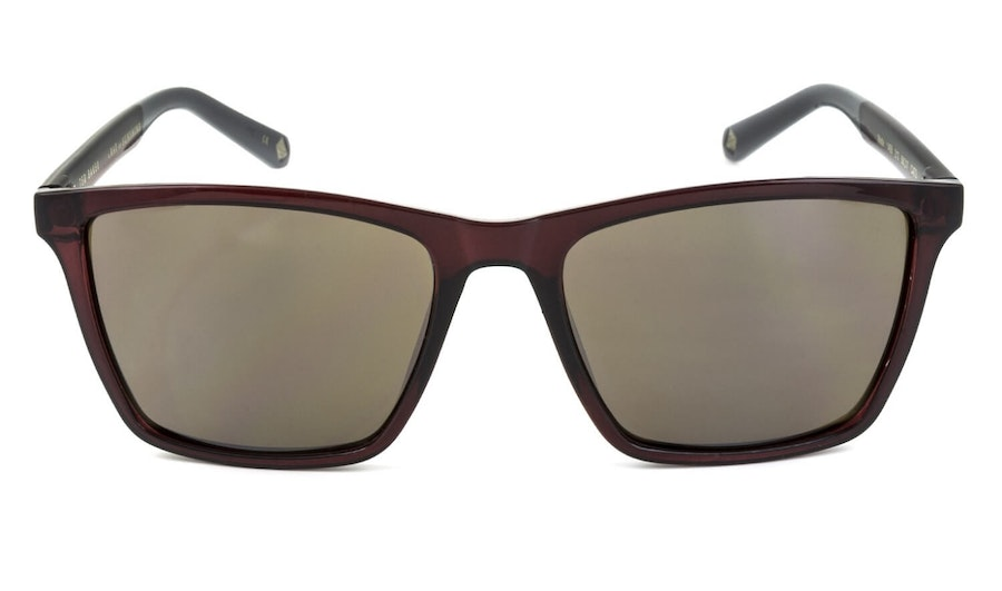 Ted Baker Wade TB 1456 (210) Sunglasses Brown / Violet