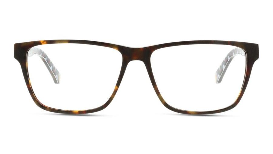Ted Baker Duval TB 8199 Men's Glasses Tortoise Shell