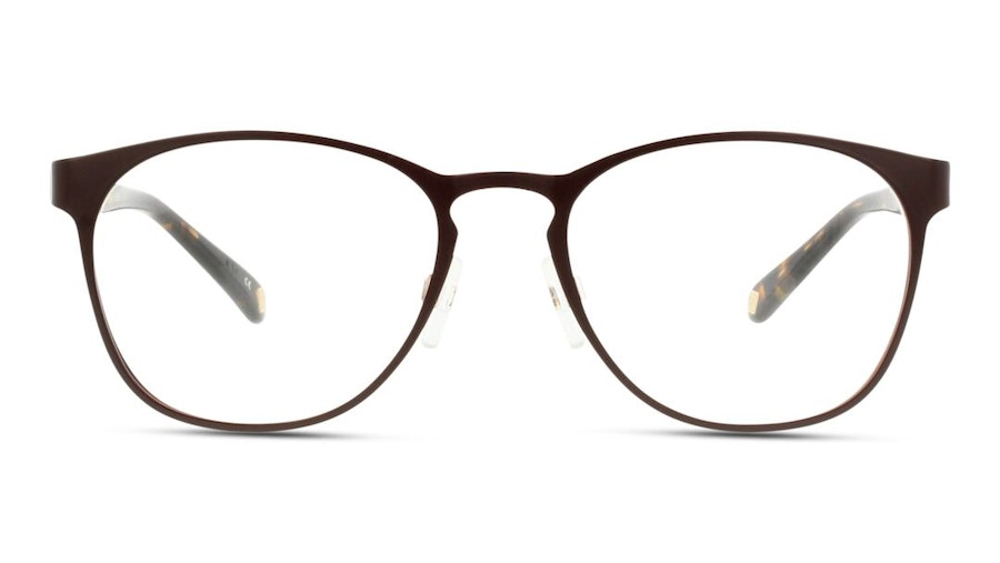 Ted Baker Shaw TB 4271 Men's Glasses Brown