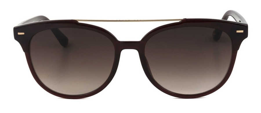Ted Baker Solene TB 1539 (253) Sunglasses Brown / Red