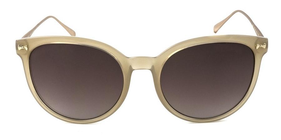 Ted Baker Maren TB 1519 (450) Sunglasses Brown / Brown
