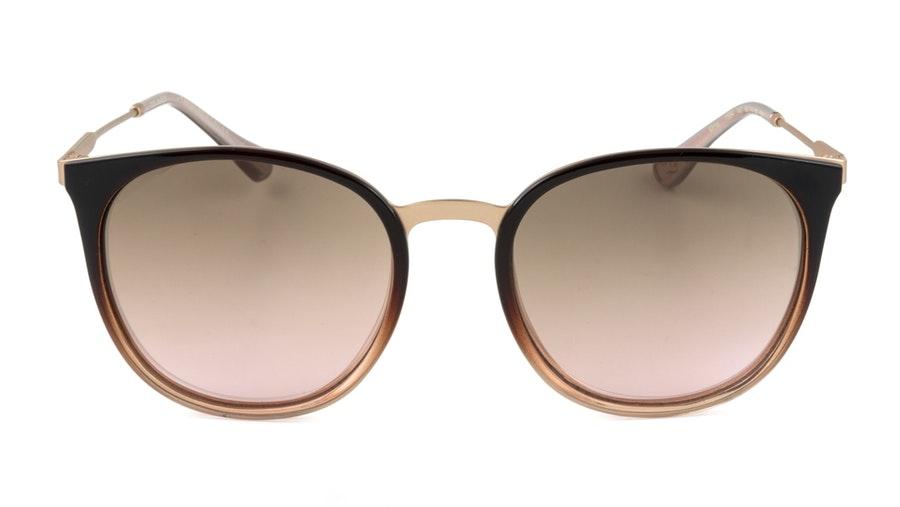 Ted Baker Mina TB 1584 Women's Sunglasses Brown / Brown