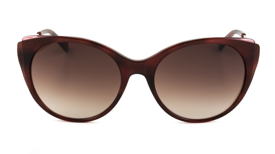 Ted Baker Keyla TB 1589 (249) Sunglasses Brown / Red