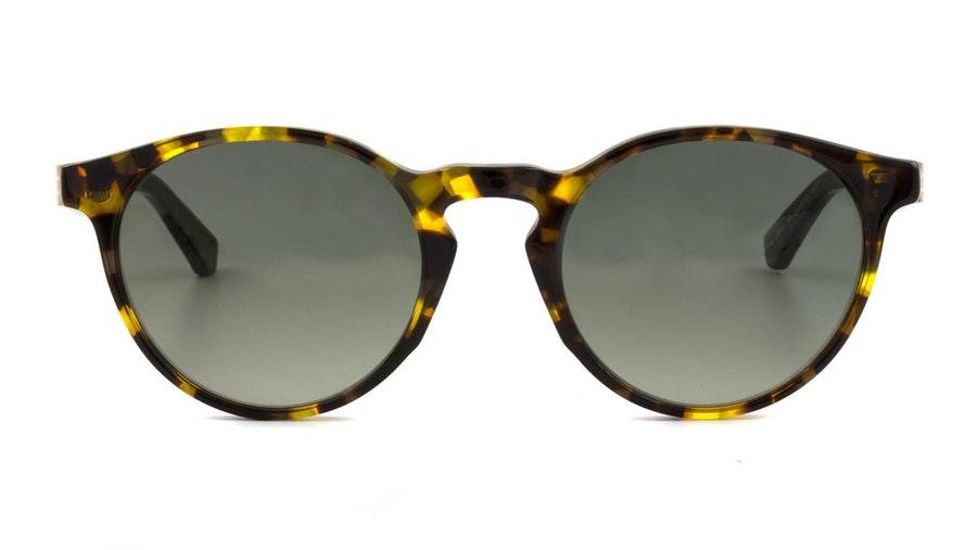 Scotch & Soda SS 8004 Men's Sunglasses Green / Green