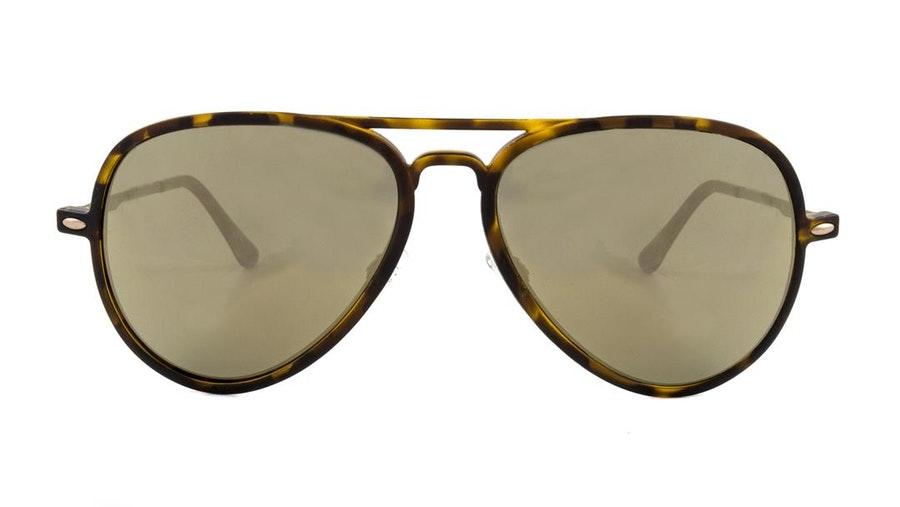 Pepe Jeans PJ 7357 Men's Sunglasses Grey / Brown