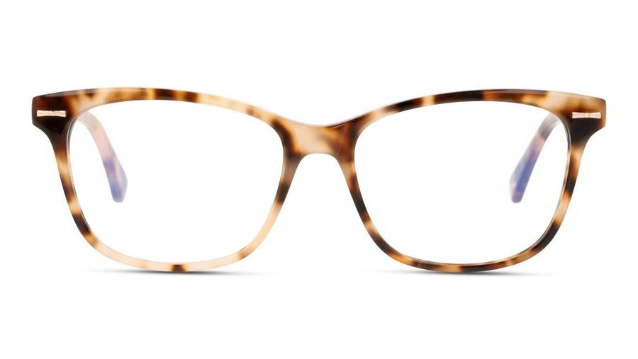 Ted Baker TB 9199 (205) Glasses Tortoise Shell