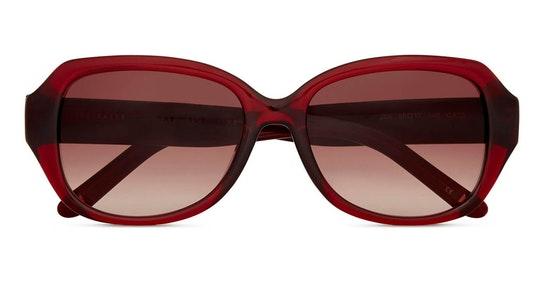 Mae TB 1606 Women's Sunglasses Brown / Burgundy