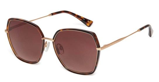Tamra TB 1607 Women's Sunglasses Brown / Gold