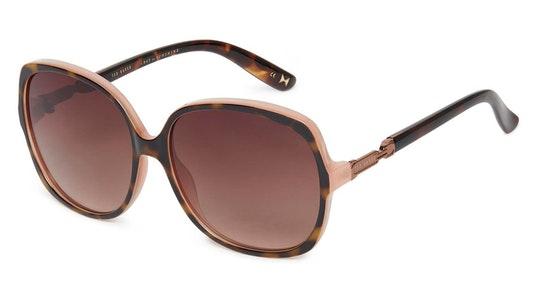 Elvia TB 1608 Women's Sunglasses Brown / Havana