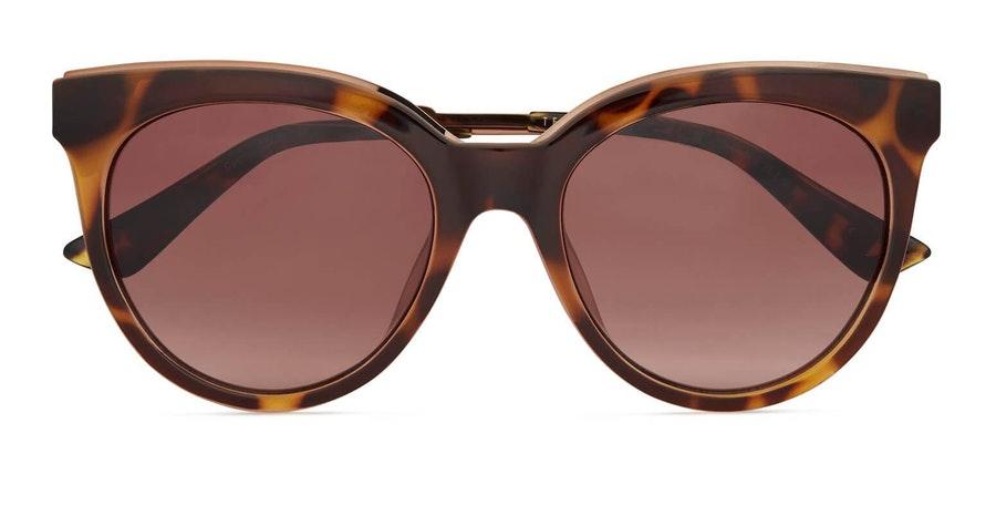 Ted Baker Fern TB 1609 Women's Sunglasses Brown / Havana
