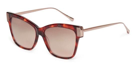 Christy TB 1615 Women's Sunglasses Brown / Purple