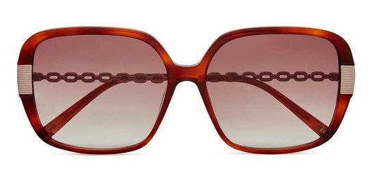 Indi TB 1616 Women's Sunglasses Brown / Brown